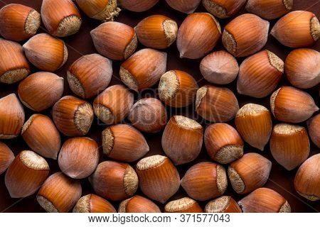 Hazelnuts In Full Screen. A Lot Of Hazelnuts On A Brown Background. Photo Above