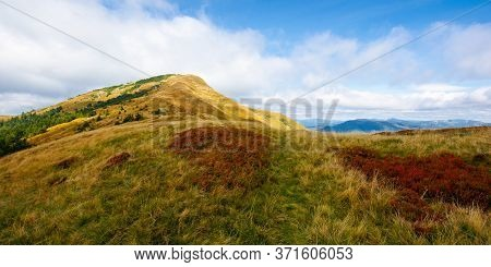 Alpine Meadow In Weathered Grass In Autumn.  Beautiful Nature Scenery In Mountains. Steep Summit In