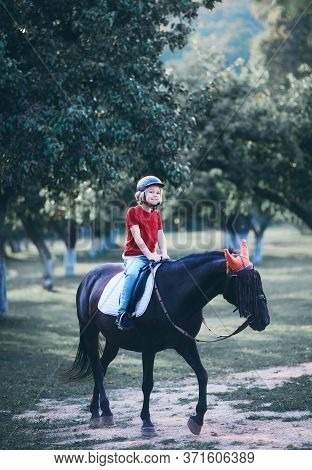 Young Boy, Kid Is Taking A Horse Riding Lesson, Equestrian Sport, Horseback Riding
