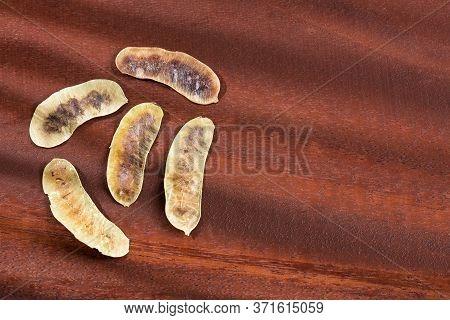 Acacia Pods - Senna Alexandrina - Cassia Acutifolia. Wooden Background
