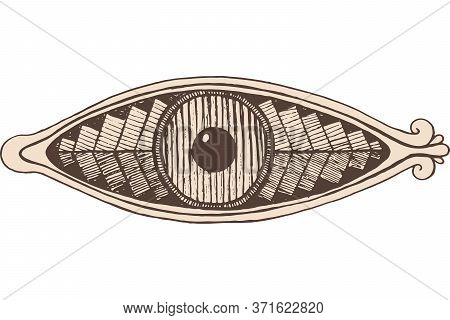 Shamanic Eye - Engraving Style. Brown Colored Line Artwork. Mystical Occult Witch Eye. Shamanic Stic