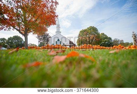 Pumpkin Patch Pumpkin Sale Outside White Traditional Church In Cooper Parish New England.