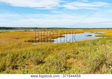Wetland Of Sengekontacket Pond On Martha's Vineyard, New England, Usa.
