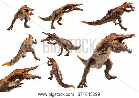 Baryonyx  ,dinosaur On White Background  . Baryonyx  ,dinosaur On White Background  .