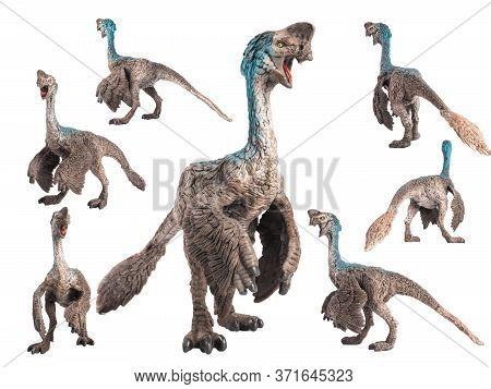 Oviraptor Dinosaur On White Background  . Oviraptor Dinosaur On White Background  .