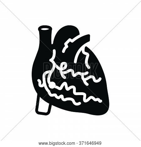 Black Solid Icon For Arteries  Veins Heart  Cholesterol  Cardiology Angioplasty Angiography Angio