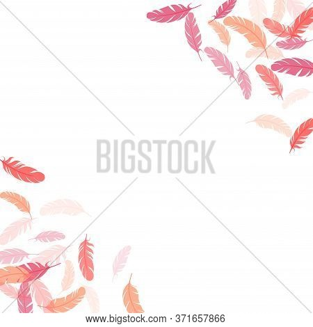 Majestic Pink Flamingo Feathers Vector Background. Falling Feather Elements Soft Vector Design. Ligh