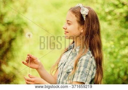 Celebrating Summer. Dandelion Full Symbolism. Summertime Fun. Folklore Beliefs About Dandelion. Girl