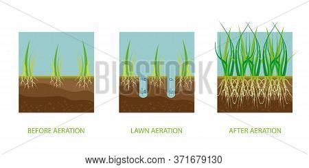 Lawn Aeration. Process Of Aeration Before And After, Lawn Grass Care Service, Gardening And Landscap