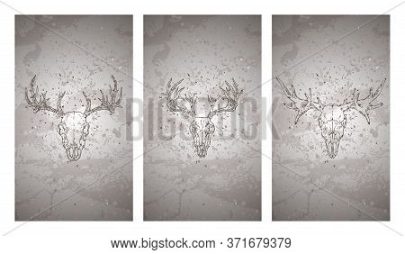 Vector Set Of Three Illustrations With Hand Drawn Skulls Deer And Moose On Grunge Texture Background