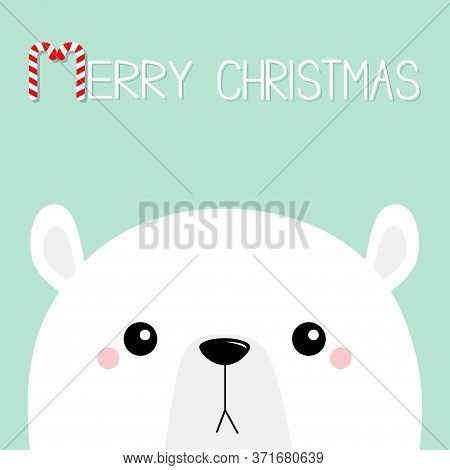 Polar White Bear Cub Sad Face. Merry Christmas. Candycane Text. Happy New Year. Cute Cartoon Baby Ch