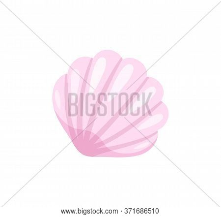 Seashell In Closeup Vector, Isolated Icon Of Flat Style. Mollusk Conch With Wavy Shell, Cockleshell