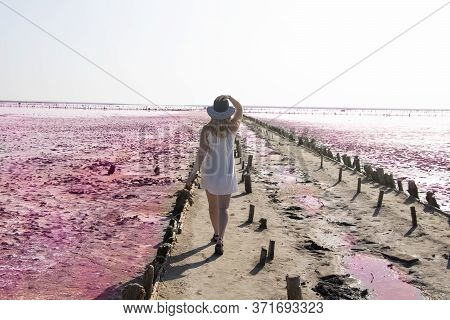 View Of The Pink Lemur Lake On The Arabat Spit In Ukraine. Unique Pond With Dunaliella Salina Algae,