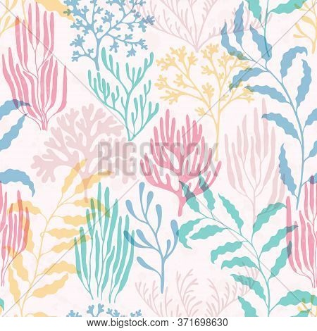 Coral Polyps Seamless Pattern. Kelp Laminaria Seaweed Algae Background. Caribbean Staghorn And Pilla