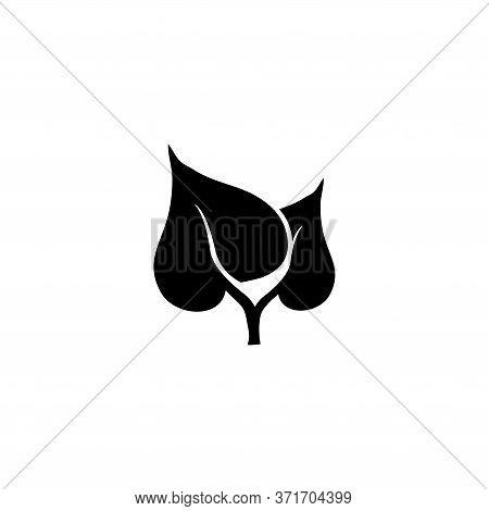 Birch Leaf Pair, Organic Plant, Flora. Flat Vector Icon Illustration. Simple Black Symbol On White B