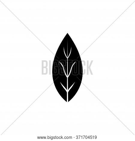 Aromatic Bay Laurel Leaf, Aroma . Flat Vector Icon Illustration. Simple Black Symbol On White Backgr