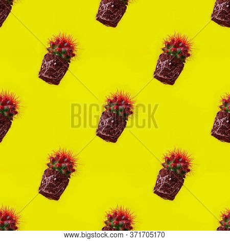 Seamless Diagonal Pattern With Round Cactus Without Pot. Trendy Plant With Sharp Red Needles With Wh