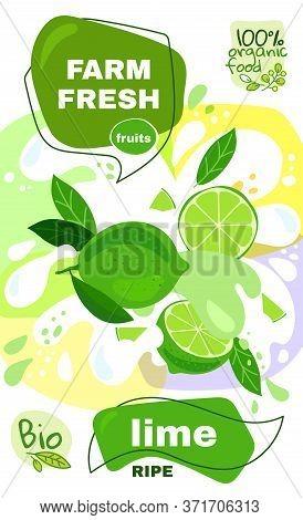 Food Label Template. Vector Illustration For Organic Lime Milkshake Fruit Drink. Natural Bio Fruits