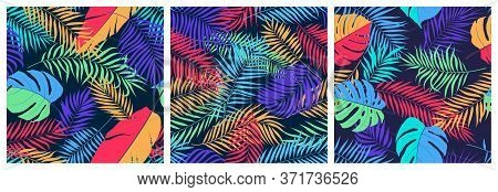 Set Of Seamless Patterns With Exotic Colorful Leaves Of Monstera, Banana Tree And Palm Branches, Bri