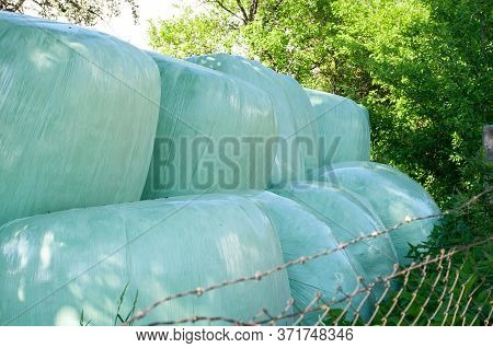 Fodder For Livestock Wrapped In Green Plastic Foil On A Farmyard