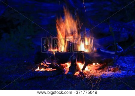 burning wood in night campfire