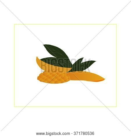 Set With Parts, Slices Of Yellow Mango And Green Leaves On A White Background. Fruit Set. Mango Tree