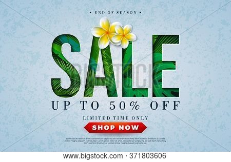 Summer Sale Design With Parrot Flower And Tropical Palm Leaves In Typography Letter On Blue Backgrou