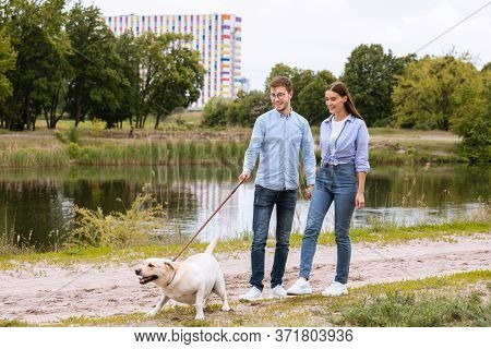 Active Pet Concept. Modern Couple Walking Their Labrador In Park Near Lake, Dog Is Barking And Ready