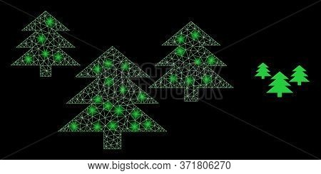 Glowing Web Mesh Fir Tree Forest With Glowing Spots. Illuminated Vector 2d Model Created From Fir Tr
