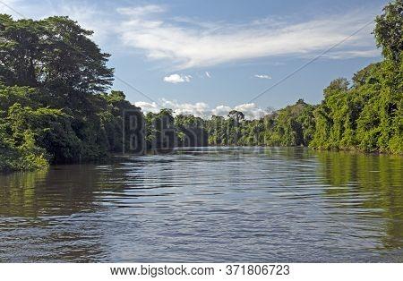 Tropical Trees And The Tele Pires Tropical Rainforest River Near Alta Floresta, Brazil