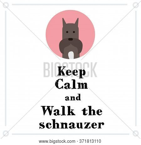 Keep Calm And Walk The Schnauzer , Illustration On White Background