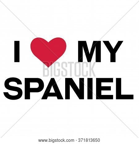 I Love My Spaniel , Illustration On White Background