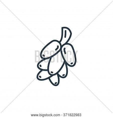 date palm icon isolated on white background from  collection. date palm icon trendy and modern date