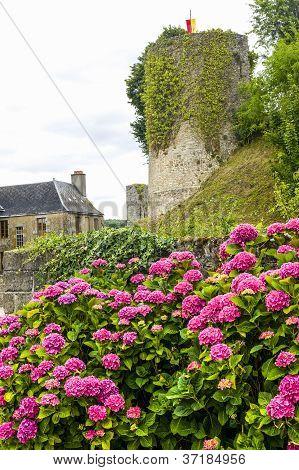 Sainte-Suzanne (Mayenne Pays de la Loire France) - Ancient buildings and hydrangeas poster