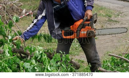 A Utility Worker In A Blue Jacket With A Chainsaw Cuts Trees And Cleans Branches In A Garden, Park O