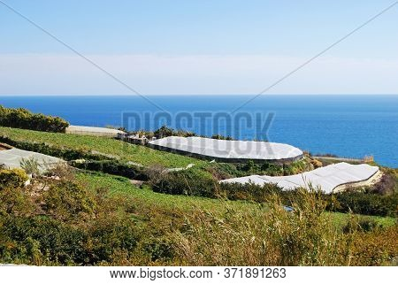 View Of The Village With Crops Growing Under Poly-tunnels In The Foreground, Maro, Costa Del Sol, Ma