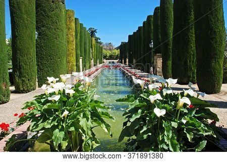 Water Garden At The Palace Fortress Of The Christian Kings (alcazar De Los Reyes Cristianos), Cordob