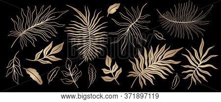 Tropical Plant Leaf Set.botanical Floral Element Background.design For Home Decor, Fabric, Carpet, W