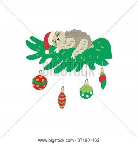 A Cute Sleeping Sloth On A Beautiful Decorated Christmas Branch. Nice Santa Hat And Xmas Balls. Vect