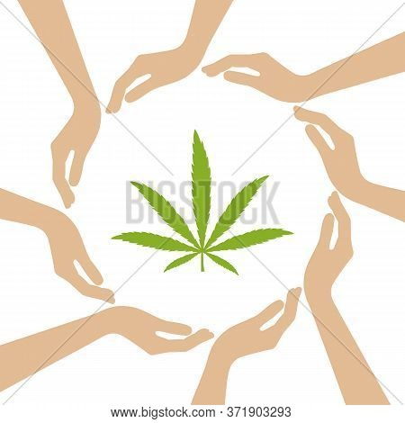 Cannabis Leaf In The Middle Of Human Hands Vector Illustration Eps10