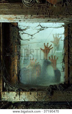 Zombies Outside A Window
