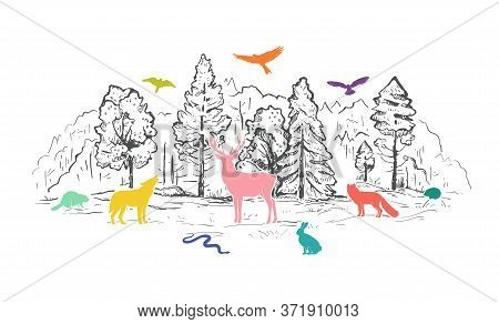 Sketch Vector Landscape With Forest And Colorful Animals. Flat Animals Silhouettes. Wolf, Deer, Beav