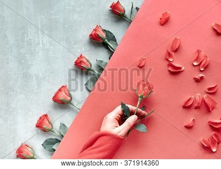 Diagonal Geometric Paper Background On Stone. Flat Lay, Female Hand Holding Red Rose, Scattered Peta