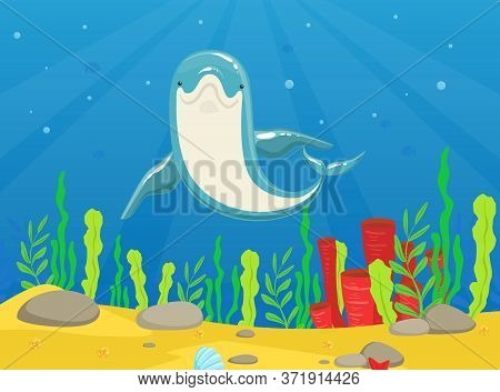 Dolphin Swimming Under The Water, Front View Of Beautiful Sea Animal In Huge Oceanic Aquarium Or Dol