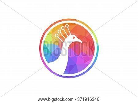 Awesome Peacock Logo Design Vector Stock Illustration. Peacock Logo Design