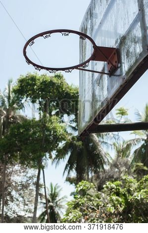 Old Rustic Grunge Basketball Hoop In Wild Tropical Forest Environment