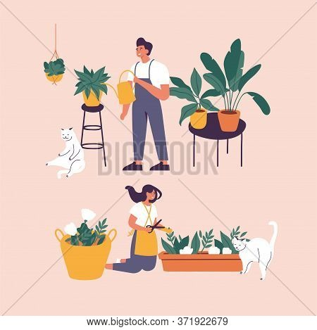 Vector Illustration Woman And Man Taking Care Of Houseplants Growing In Planters. Young Cute Woman C