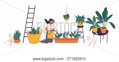 Vector Illustration Girl Taking Care Of Houseplants Growing In Planters. Young Cute Woman Cultivatin