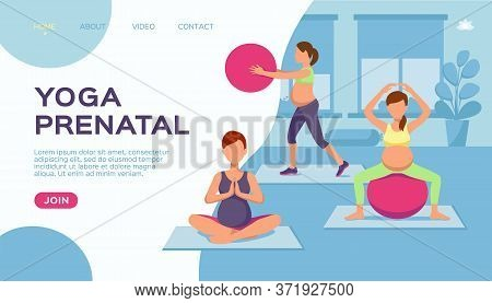 Yoga Pregnant Women Group, Vector Illustration. Healthy Exercise For Fitness Lifestyle, Sport Cartoo