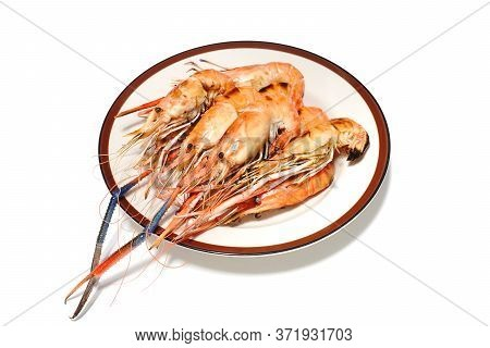 Closed Up Shot Grilled Shrimps On Plate Isolated On White Background.